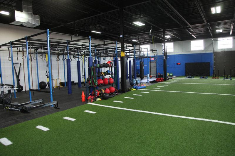 Humane manufacturing shok turfx premium indoor fitness solutions